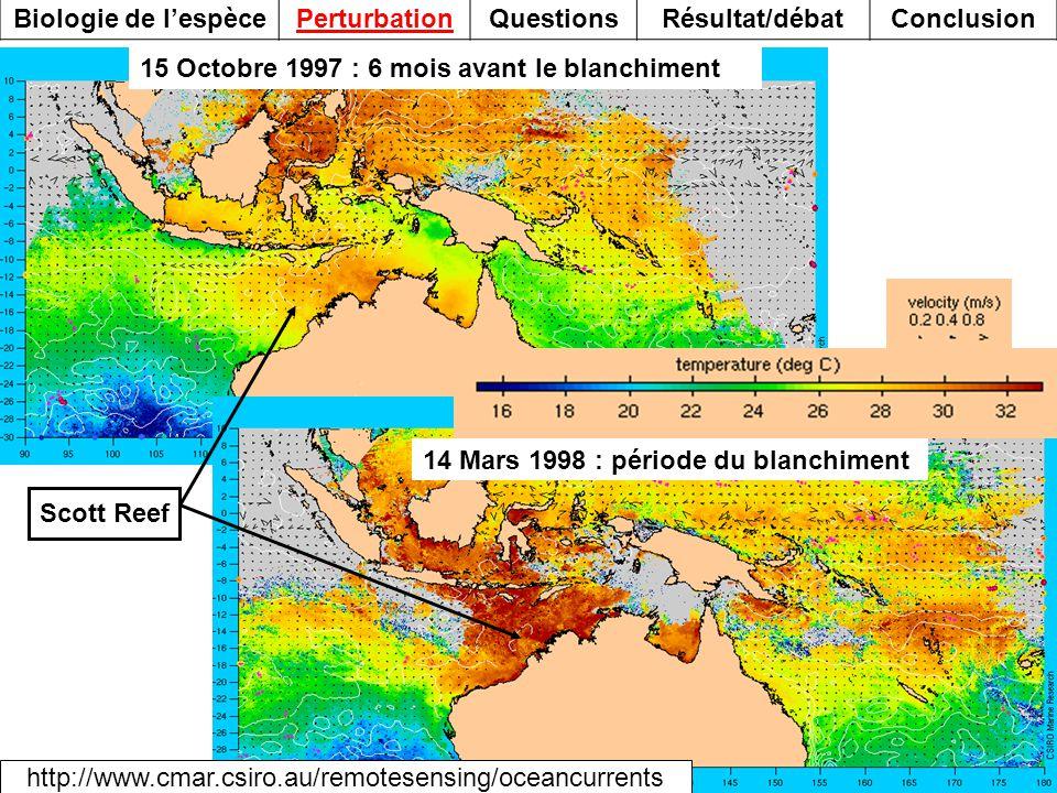 15 Octobre 1997 : 6 mois avant le blanchiment Scott Reef http://www.cmar.csiro.au/remotesensing/oceancurrents 14 Mars 1998 : période du blanchiment Bi