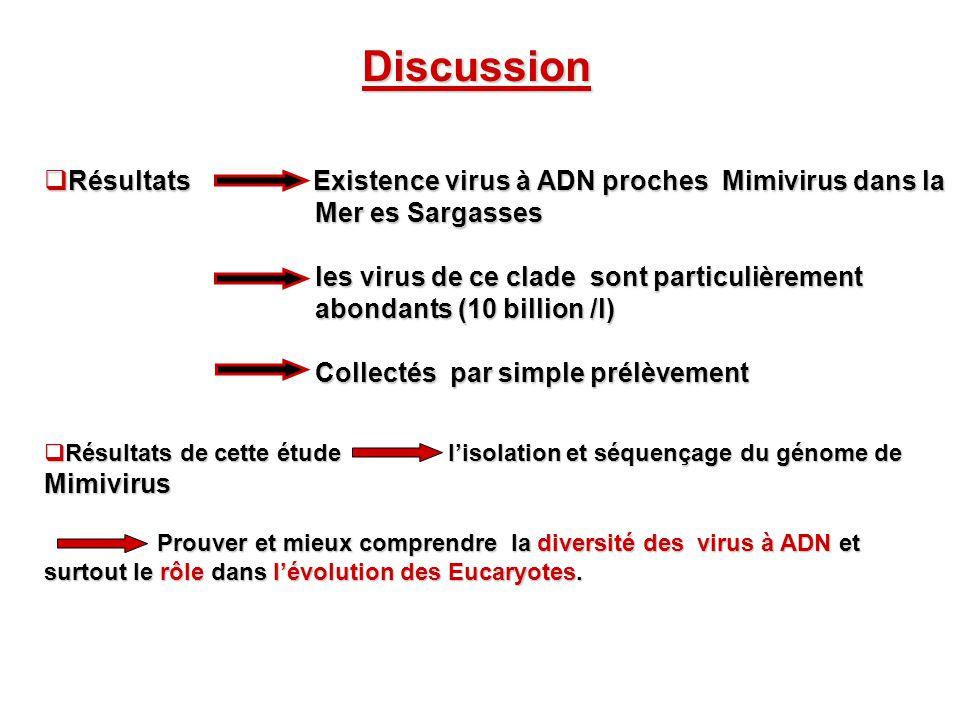 Discussion Résultats Existence virus à ADN proches Mimivirus dans la Résultats Existence virus à ADN proches Mimivirus dans la Mer es Sargasses Mer es