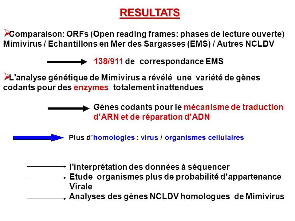 RESULTATS Comparaison: ORFs (Open reading frames: phases de lecture ouverte) Mimivirus / Echantillons en Mer des Sargasses (EMS) / Autres NCLDV 138/91