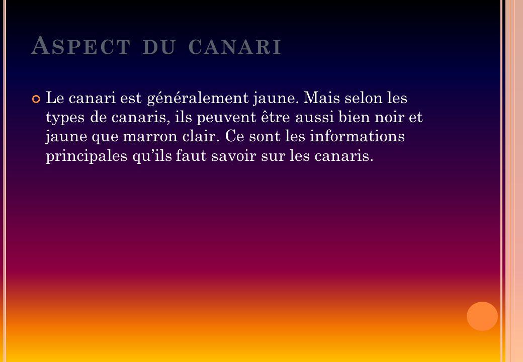 A SPECT DU CANARI Le canari est généralement jaune. Mais selon les types de canaris, ils peuvent être aussi bien noir et jaune que marron clair. Ce so