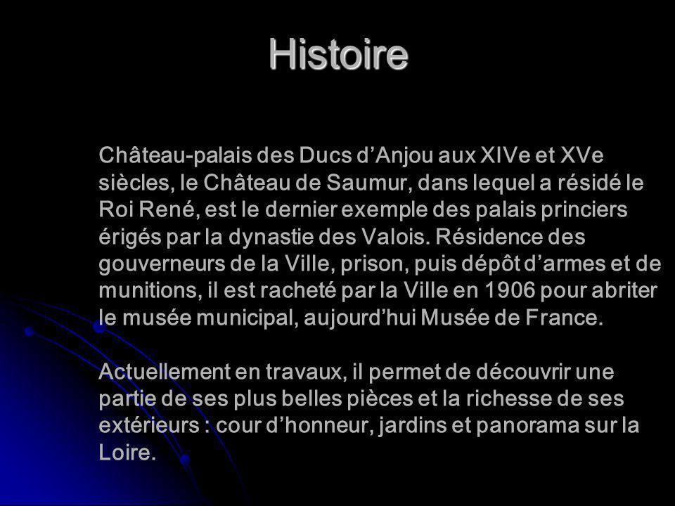 Histoire Château-palais des Ducs dAnjou aux XIVe et XVe siècles, le Château de Saumur, dans lequel a résidé le Roi René, est le dernier exemple des pa