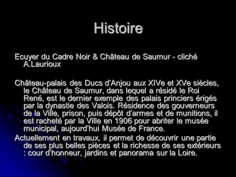 Histoire Château-palais des Ducs dAnjou aux XIVe et XVe siècles, le Château de Saumur, dans lequel a résidé le Roi René, est le dernier exemple des palais princiers érigés par la dynastie des Valois.