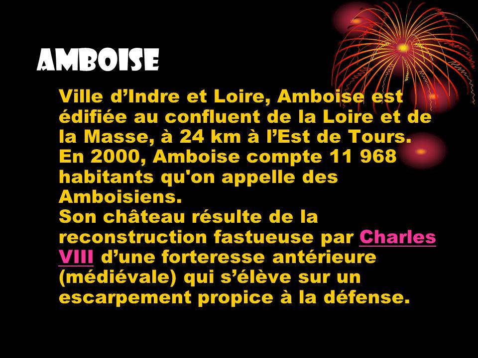 Amboise Ville dIndre et Loire, Amboise est édifiée au confluent de la Loire et de la Masse, à 24 km à lEst de Tours. En 2000, Amboise compte 11 968 ha