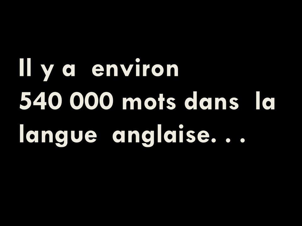 Il y a environ 540 000 mots dans la langue anglaise...