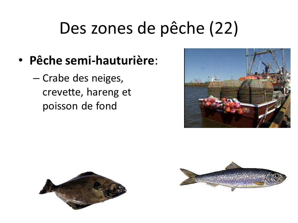 Des zones de pêche (22) Pêche semi-hauturière: – Crabe des neiges, crevette, hareng et poisson de fond