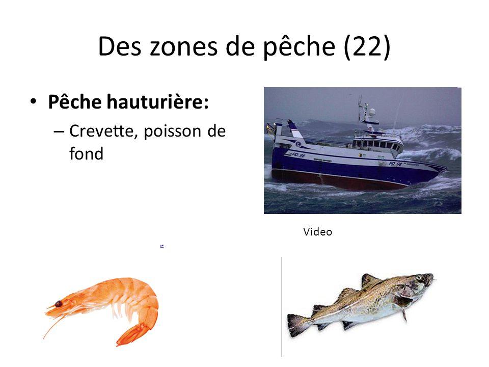 Des zones de pêche (22) Pêche hauturière: – Crevette, poisson de fond Video