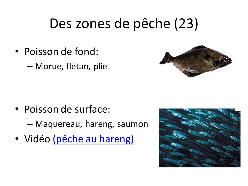 Des zones de pêche (23) Poisson de fond: – Morue, flétan, plie Poisson de surface: – Maquereau, hareng, saumon Vidéo (pêche au hareng)(pêche au hareng