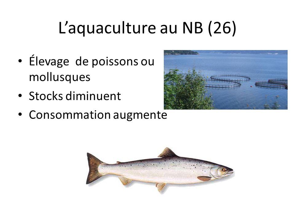 Laquaculture au NB (26) Élevage de poissons ou mollusques Stocks diminuent Consommation augmente