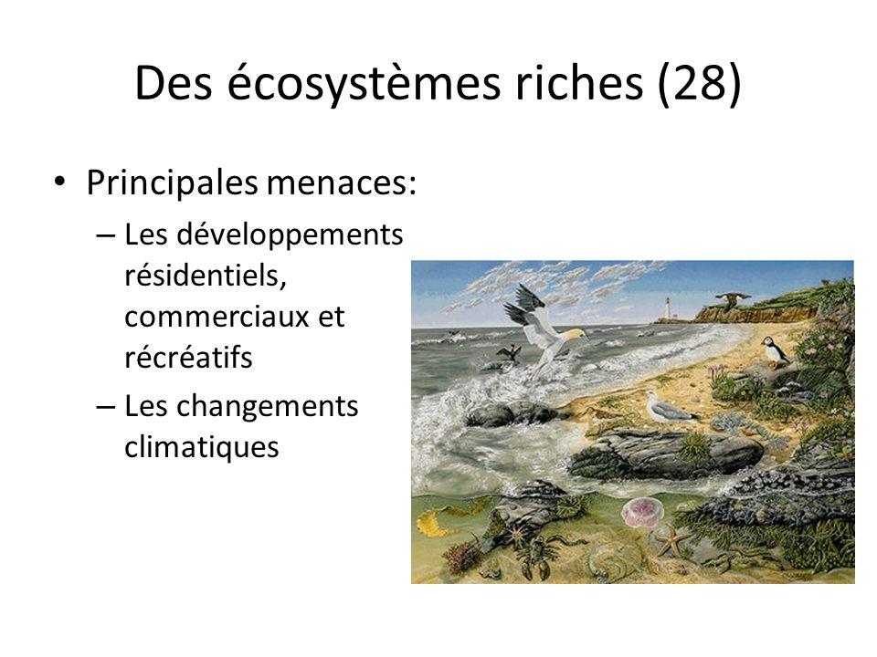 Des écosystèmes riches (28) Principales menaces: – Les développements résidentiels, commerciaux et récréatifs – Les changements climatiques