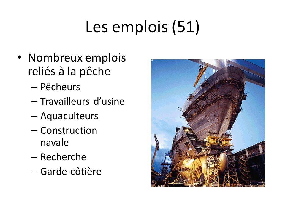 Les emplois (51) Nombreux emplois reliés à la pêche – Pêcheurs – Travailleurs dusine – Aquaculteurs – Construction navale – Recherche – Garde-côtière