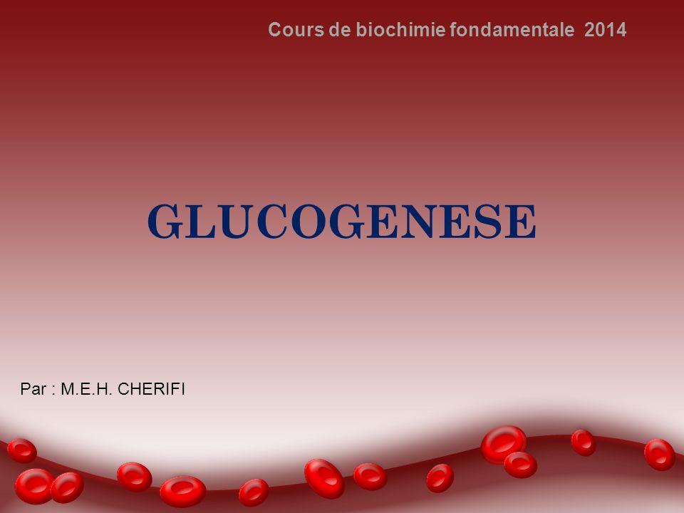 GLUCOGENESE Cours de biochimie fondamentale 2014 Par : M.E.H. CHERIFI