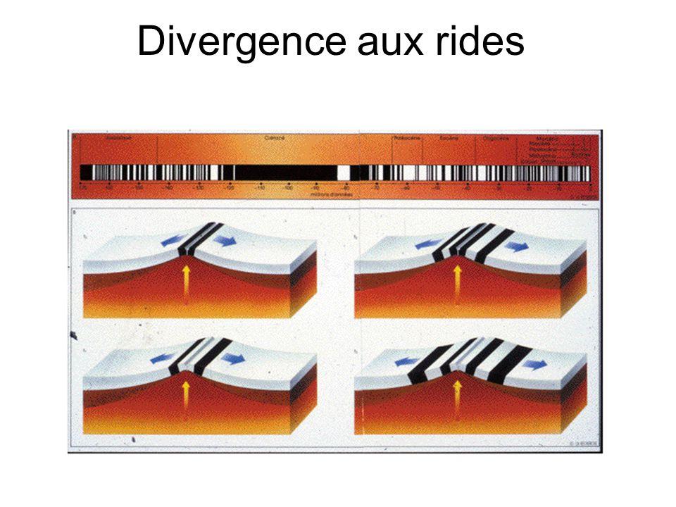 Divergence aux rides