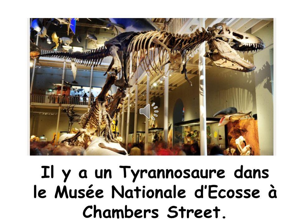 Tyrannosaure mange les petits dinosaures. Raarr! Jai faim!