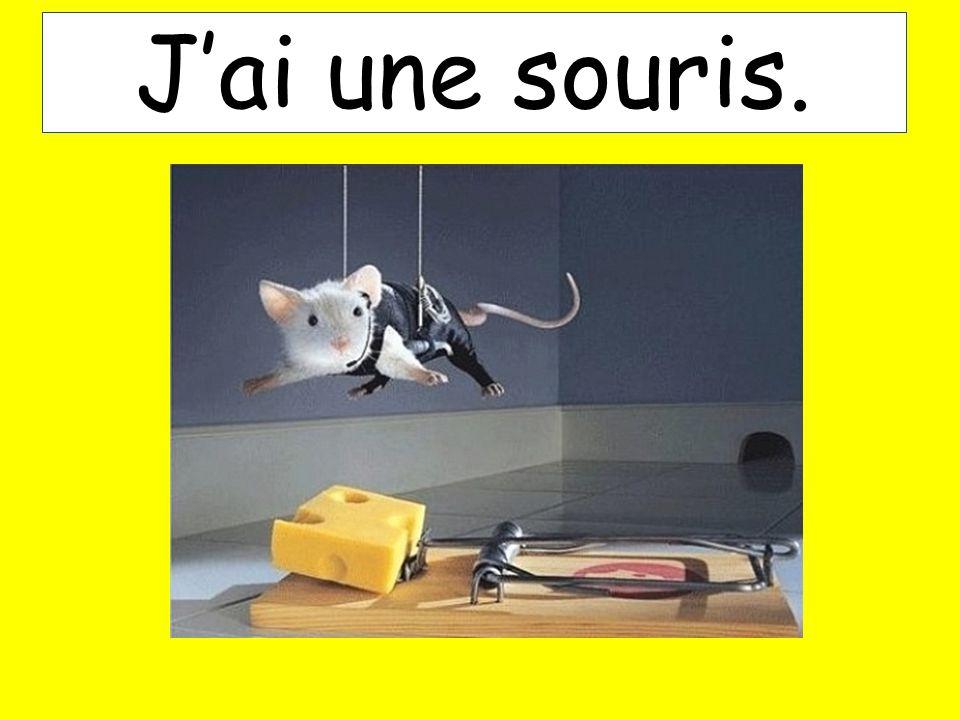 Jai une souris.