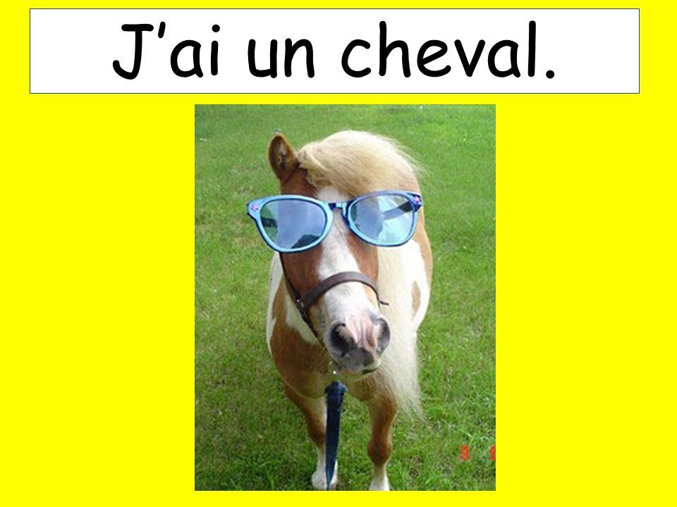 Jai un cheval.