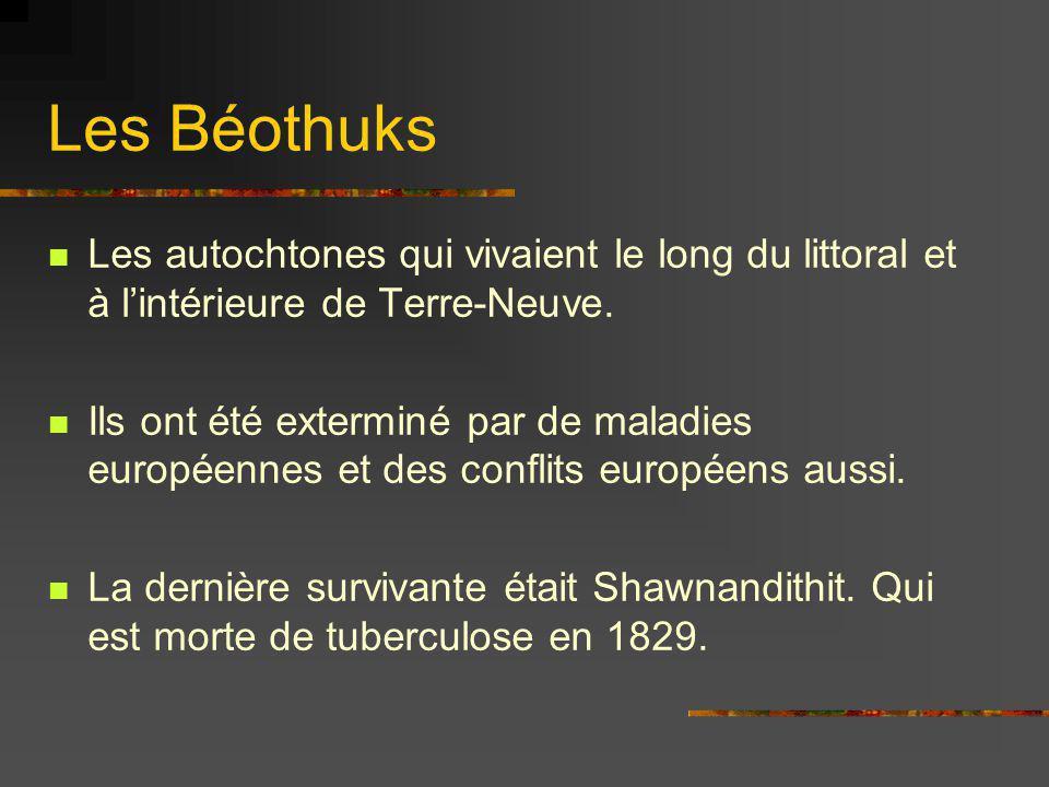 Les Béothuks Les autochtones qui vivaient le long du littoral et à lintérieure de Terre-Neuve. Ils ont été exterminé par de maladies européennes et de