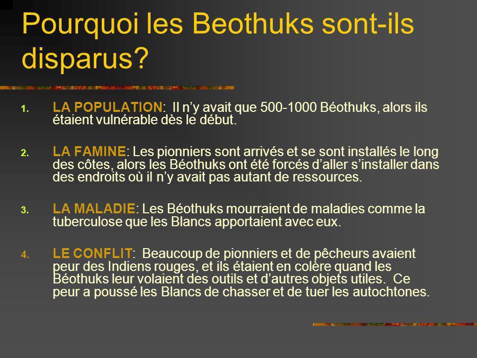 Pourquoi les Beothuks sont-ils disparus? 1. LA POPULATION: Il ny avait que 500-1000 Béothuks, alors ils étaient vulnérable dès le début. 2. LA FAMINE: