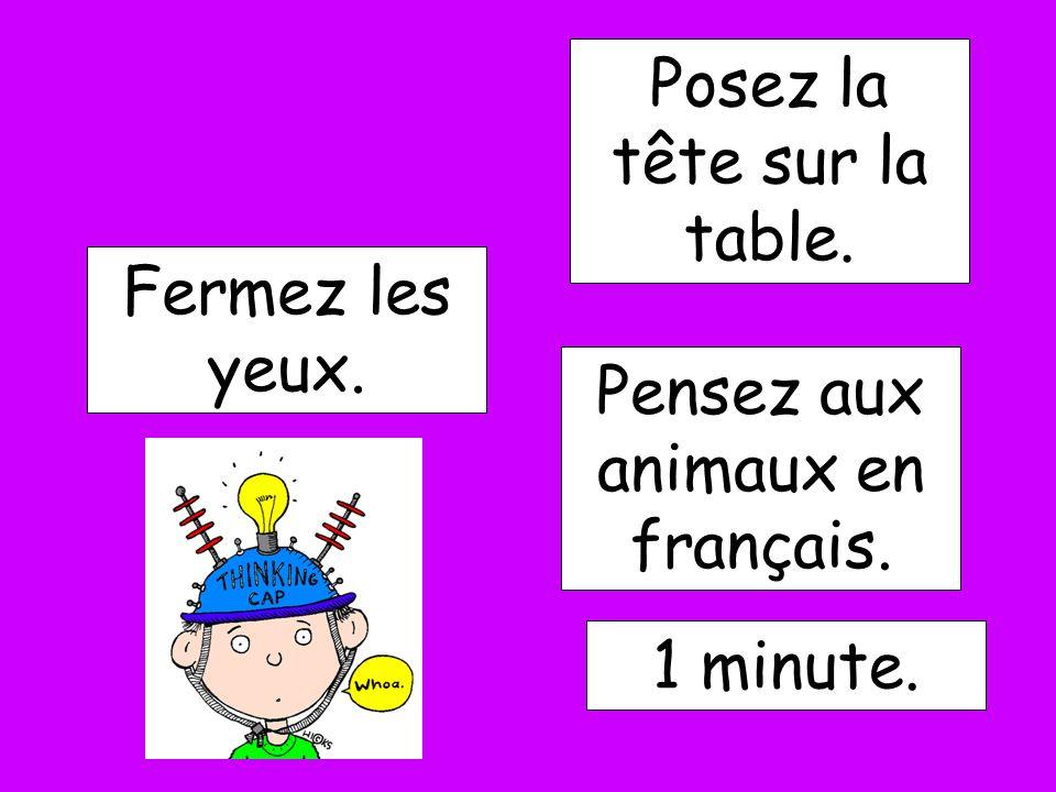 Fermez les yeux. Pensez aux animaux en français. 1 minute. Posez la tête sur la table.