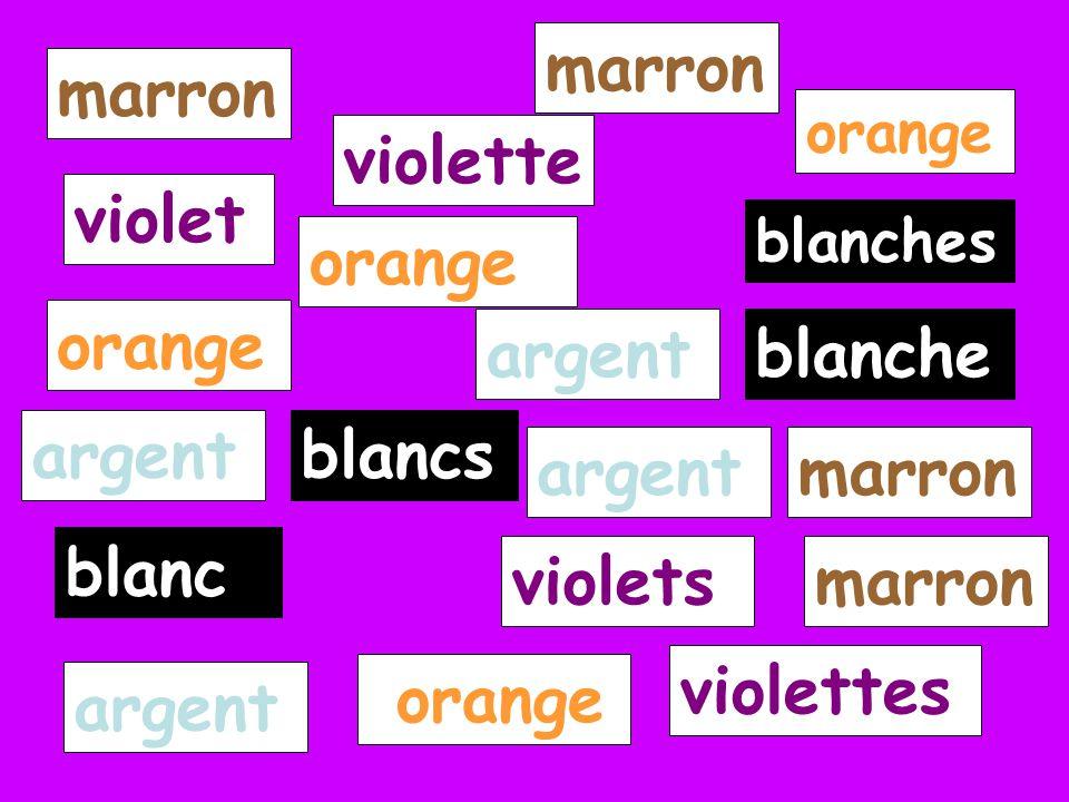 blanches blancs blanche blanc marron violet violette violettes violets orange argent