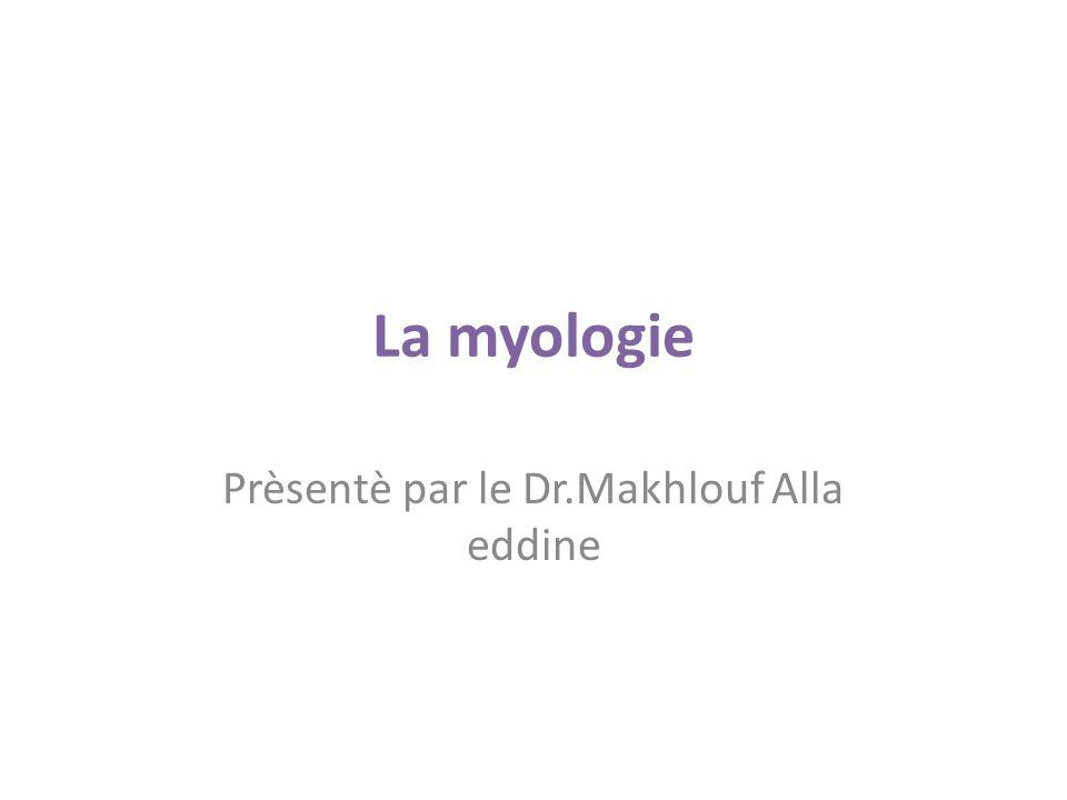 La myocyte Quel que soit leur tissu d appartenance, les myoytes, c est-à-dire les cellules musculaires encore appelées fibres musculaires, possèdent les caractéristiques suivantes : a) le cytoplasme des myocytes contient deux types de protéines filamentaires contractiles : les myofilaments d actine et les myofilaments de myosine.