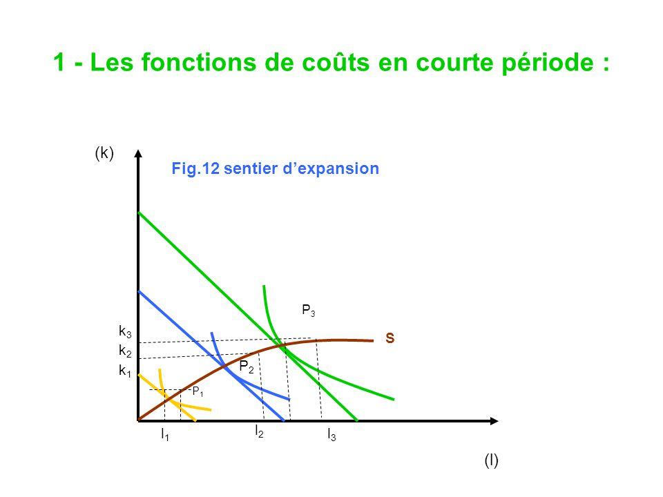1 - Les fonctions de coûts en courte période : Fig.12 sentier dexpansion (k) k3k3 k2k2 k1 k1 l1l1 l2l2 l3l3 (l) S P3P3 P2P2 P1P1