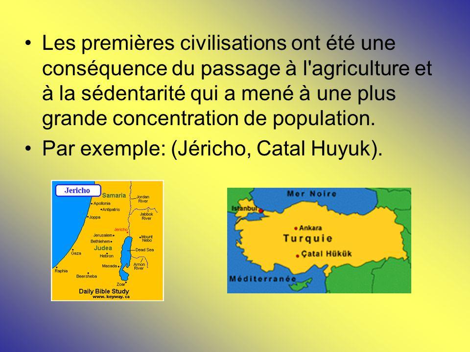 Les premières civilisations ont été une conséquence du passage à l'agriculture et à la sédentarité qui a mené à une plus grande concentration de popul