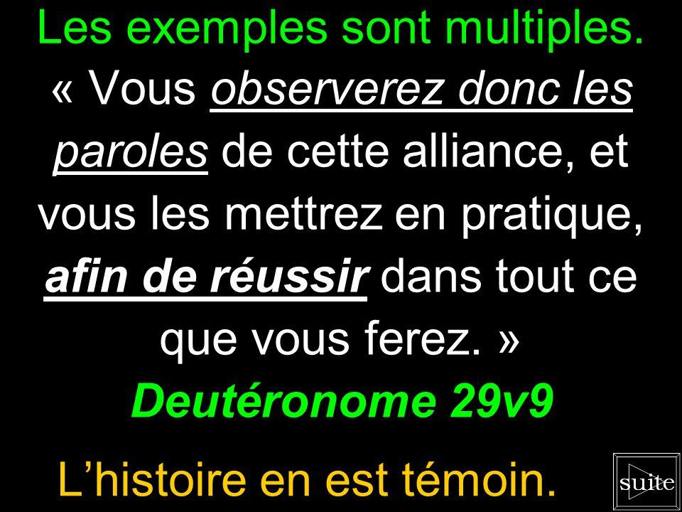 Un simple survol le montre. «...afin que lhomme de Dieu soit accompli et propre à toute bonne œuvre. » 2 Timothée 3v17 Prêt pour toute circonstance.