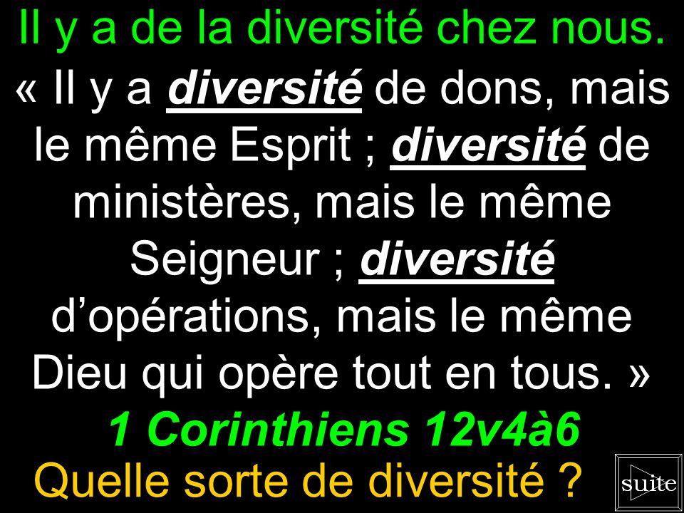Que dit la Bible ? « Il y a diversité de dons, mais le même Esprit ; diversité de ministères, mais le même Seigneur ; diversité dopérations, mais le m