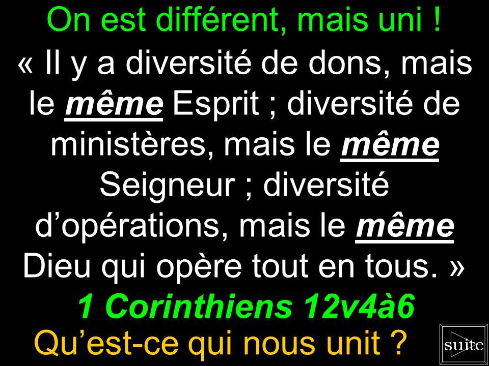 Il y a de la diversité chez nous. « Il y a diversité de dons, mais le même Esprit ; diversité de ministères, mais le même Seigneur ; diversité dopérat