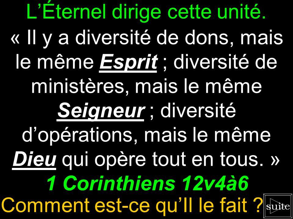 On est différent, mais uni ! « Il y a diversité de dons, mais le même Esprit ; diversité de ministères, mais le même Seigneur ; diversité dopérations,