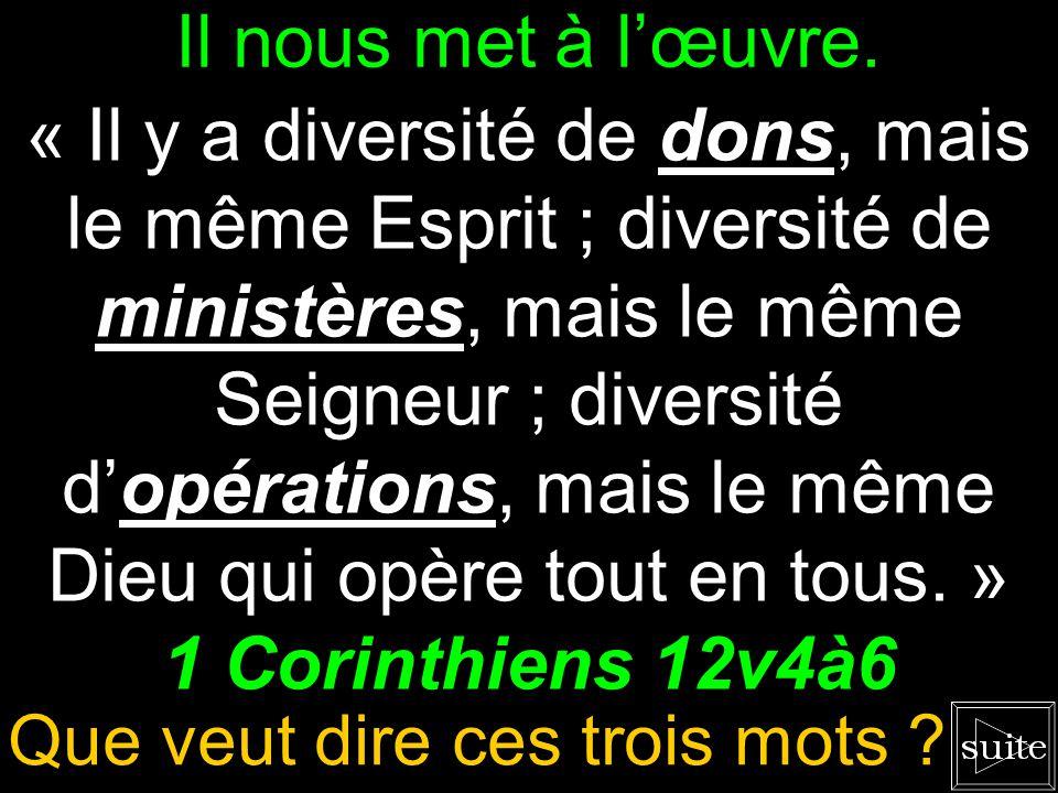 LÉternel dirige cette unité. « Il y a diversité de dons, mais le même Esprit ; diversité de ministères, mais le même Seigneur ; diversité dopérations,