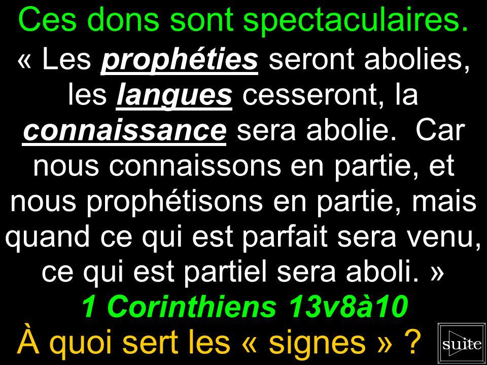 Une seule chose est parfaite. « Les prophéties seront abolies, les langues cesseront, la connaissance sera abolie. Car nous connaissons en partie, et