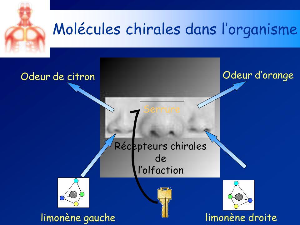Récepteurs chirales de lolfaction limonène gauche limonène droite Molécules chirales dans lorganisme Odeur de citron Odeur dorange Serrure