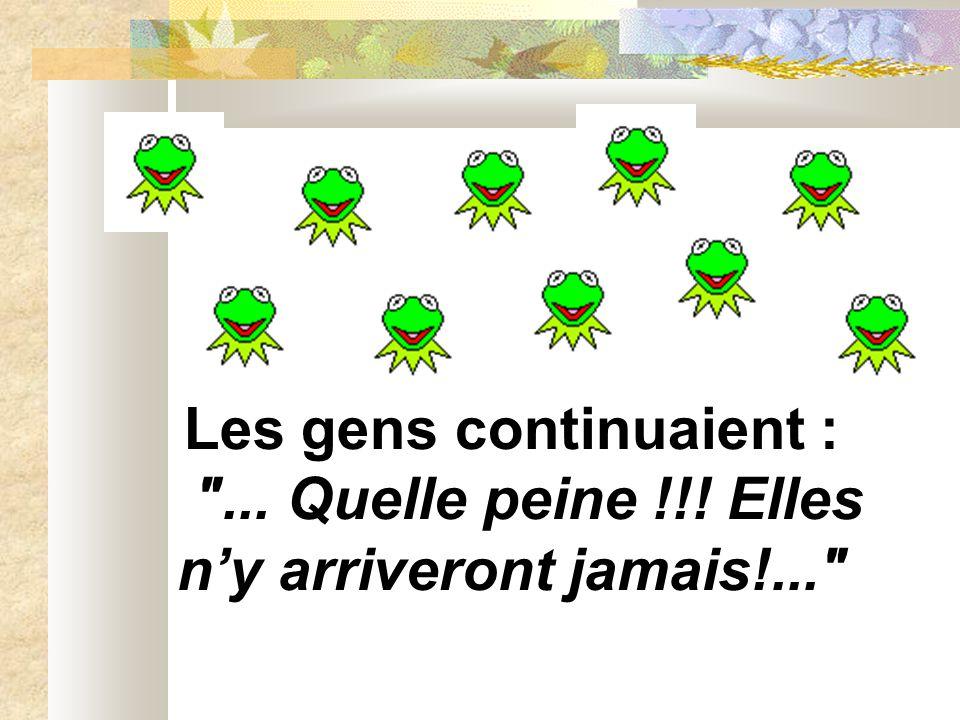 Les grenouilles commencèrent à se résigner, sauf une qui continua de grimper et…