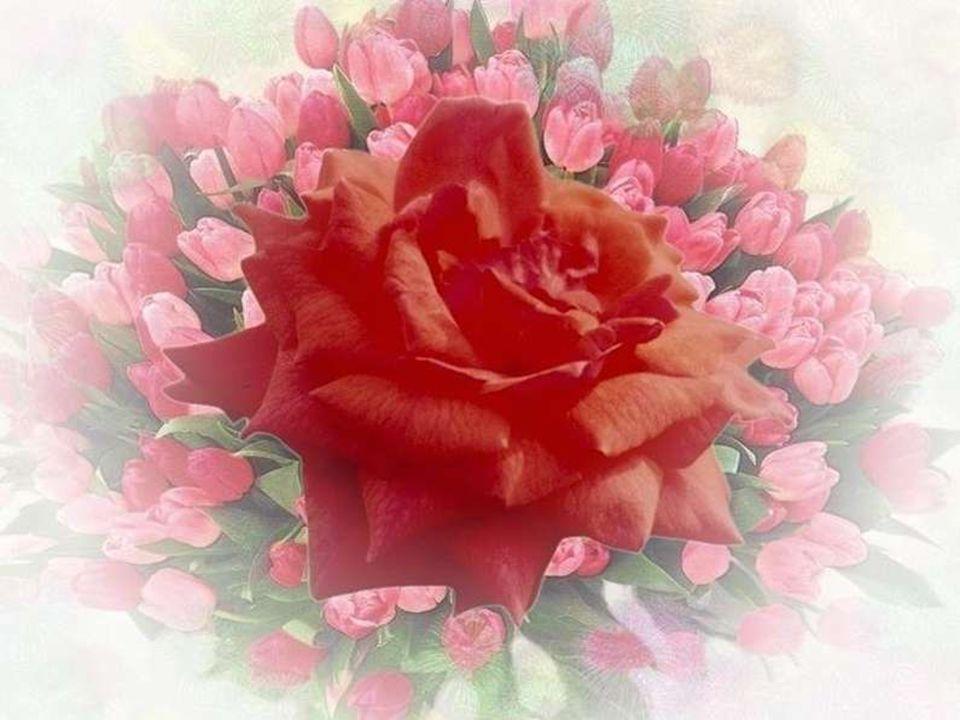 Mais au corps qui retient cet essor de mon âme Donne dans ta bonté le pain de chaque jour; Et ranime sans cesse en mon cœur cette flamme Quau séjour dici-bas on appelle lamour!