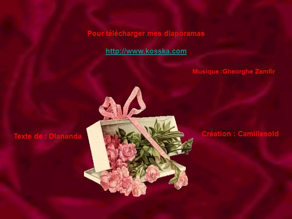 Que ne fut pas sa surprise de sentir que la terre se fondait avec bonheur dans celui de son doux parfum de rose.