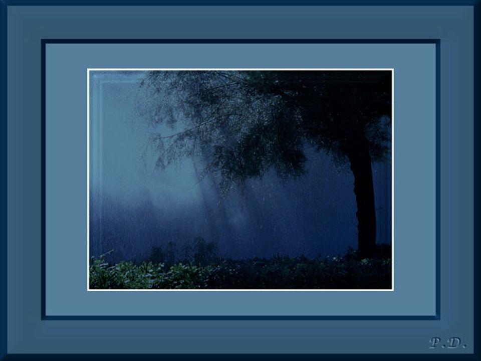 Écoutez les bruits de l'infini… Regardez le silence de la nuit… Votre cœur voyage dans les jardins du Paradis… Parmi ces fleurs, votre esprit a bien g