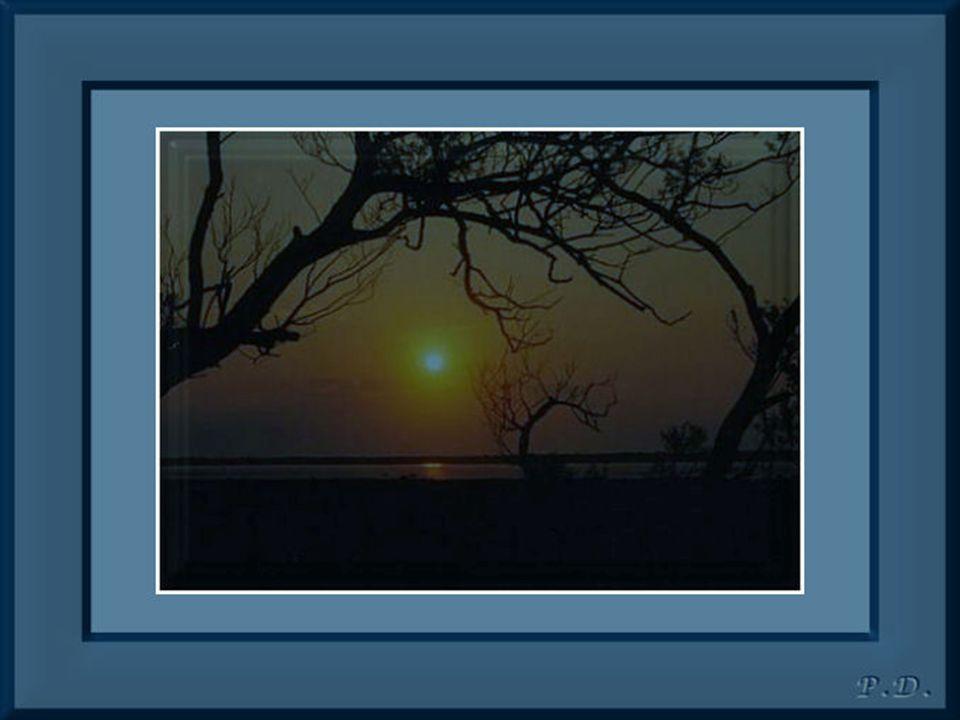 Plus jamais de tourment…c est la plénitude… Vous qui ne connaissiez que l incertitude… Bien au delà des nuages et de la Mer… Vous discernez ce qui est pour vous, si prospère… Discrètement caressé par les joies de la vie… Tout en secret….vous en êtes si ravi…