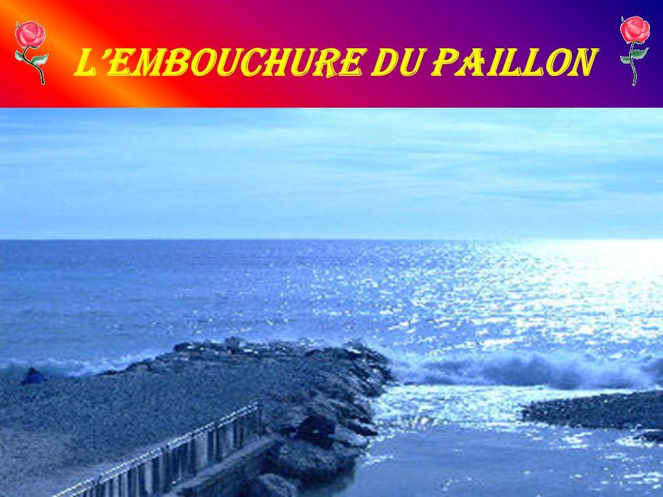 LEmbouchure du Paillon