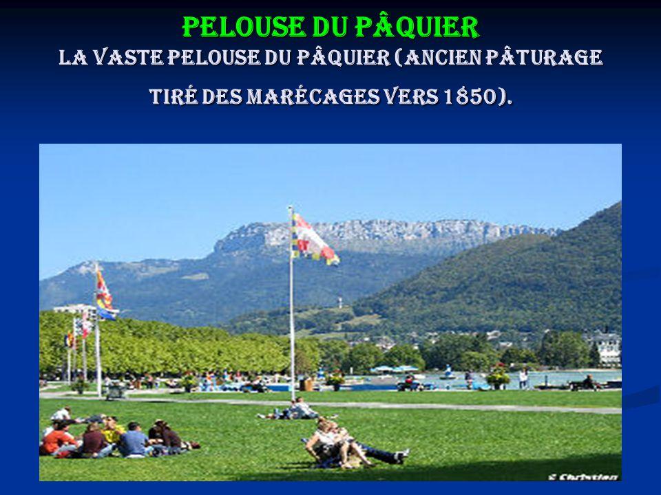 Pelouse du Pâquier La vaste pelouse du Pâquier (ancien pâturage tiré des marécages vers 1850).