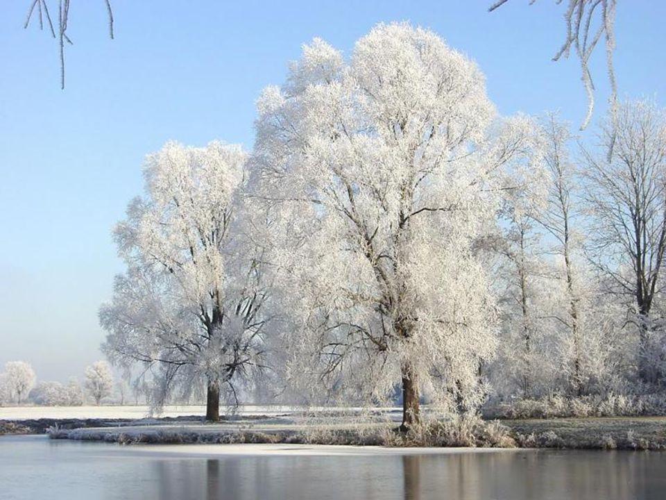 L'hiver a son charme malgré tout… Il agrémente notre décor… Nous fait rêver…à nos passions… Ah qu'il fait bon de se laisser bercer… Par de nouvelles é