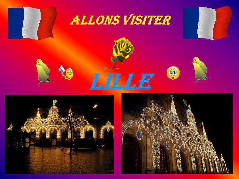 Lille Pauplée de 200 000 habitants, ville du nord de la France, capitale de la région Nord-Pas-de-Calais, Lille est située sur la Deûle, en Flandre.