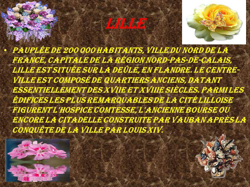 Lille Pauplée de 200 000 habitants, ville du nord de la France, capitale de la région Nord-Pas-de-Calais, Lille est située sur la Deûle, en Flandre. L