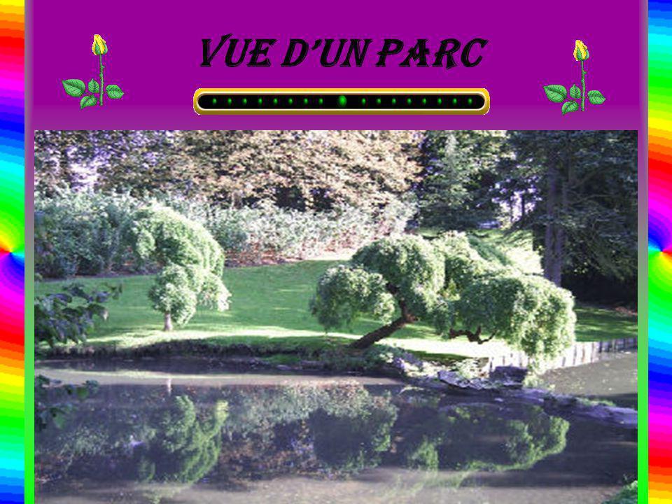 Vue dun parc