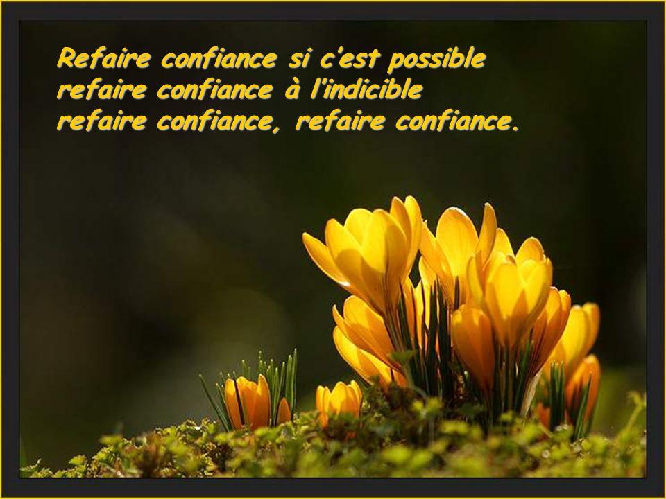 Refaire confiance si cest possible refaire confiance à lindicible refaire confiance, refaire confiance.