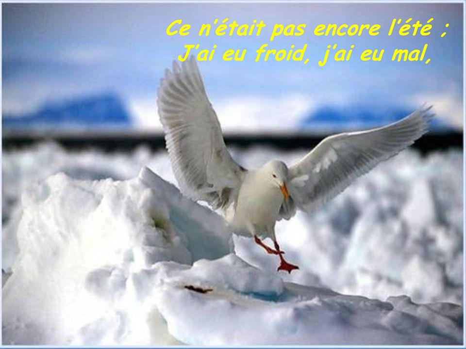 Images : diverses prises sur le net Texte : Intitulé Silence de Véronique Auffret Véronique Auffret Juin 2005 Conception : Huguette Ambassadrice de la paix http://www.ppshuguette.com Huguette32@hotmail.com