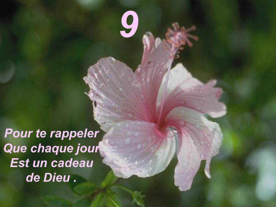 Pour te rappeler Que chaque jour Est un cadeau de Dieu. 9