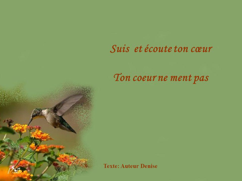 Suis et écoute ton cœur Ton coeur ne ment pas Texte: Auteur Denise