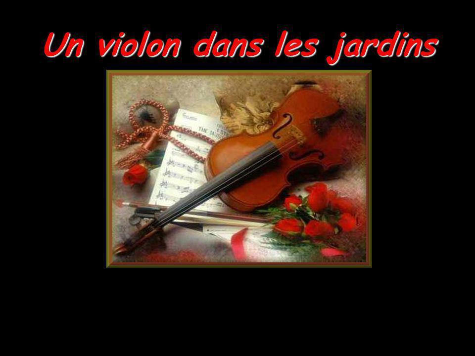 Un violon dans les jardins