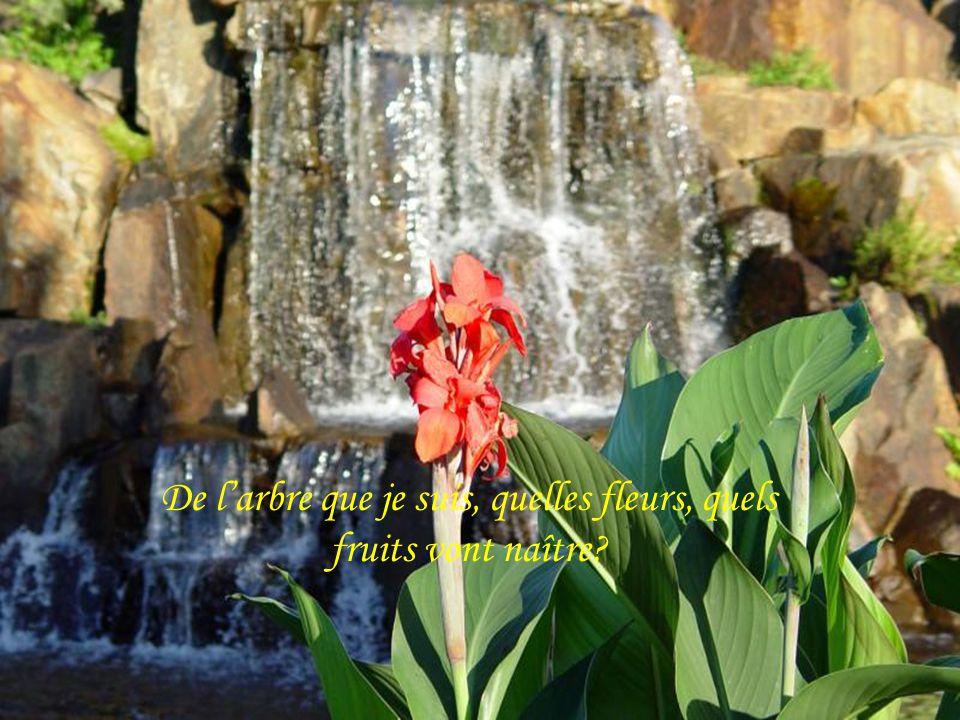De larbre que je suis, quelles fleurs, quels fruits vont naître?